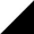 Цвет: Черный и белый